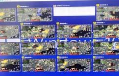 揭秘:投入5万的全自动游戏挂机项目!