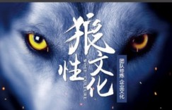 执行力与狼性团队的打造(10 集)